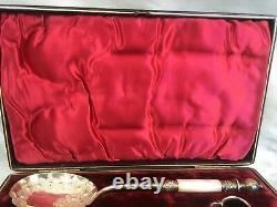 C1884 Cased Set MOP Handle Embossed Berry Fruit Serving Spoons & Grape Scissors
